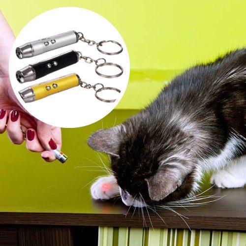 Laser-para-gatos